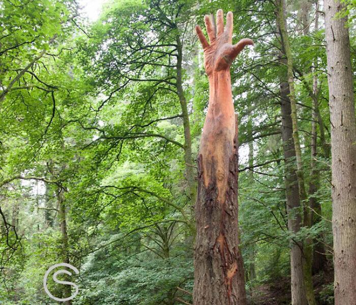 Fırtınadan Zarar Gören Ağaç 16.000 Dolar Değerinde Devasa Bir Ele Dönüştürüldü