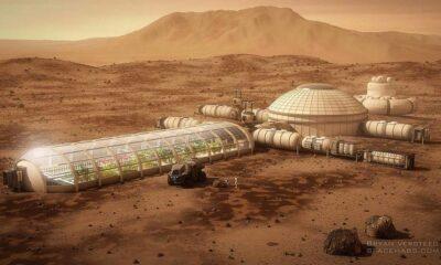 Elon Musk Mars'a Koloniler Kurmakta Zorlanacak